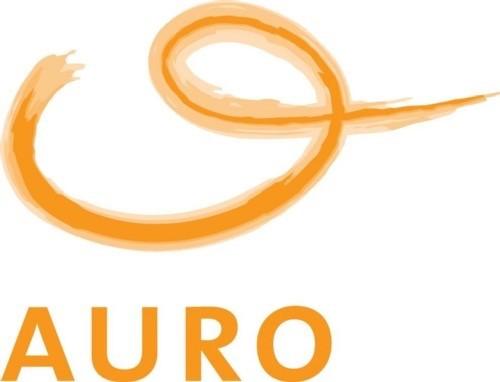 KV_Opdrachten_Auro